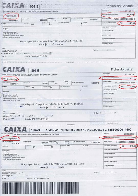 Boleto-falso-registro-dominio-2