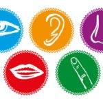 Torne sua marca irresistível aos sentidos com marketing sensorial
